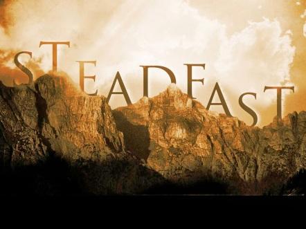 Steadfast3